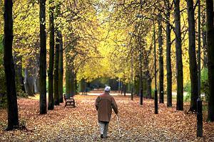 Emerytury kobiet. Ważne zmiany w wieku emerytalnym i emeryturach pomostowych. Niekorzystna waloryzacja
