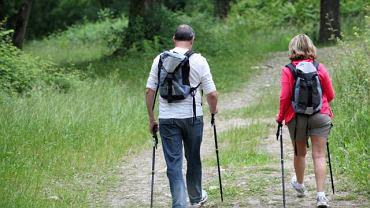Aby uniknąć kontaktu z kleszczem, przed pójściem na spacer do lasu, należy się odpowiednio przygotować