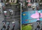 Ciekawostki naukowe. Kolorowe deszczowe chodniki, jak d�ugo okradamy pszczo�y i gwiezdne staruszki