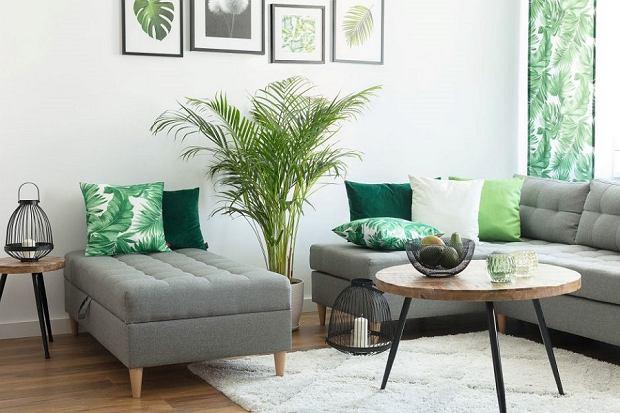 Jak wybrać minimalistyczne meble do mieszkania?
