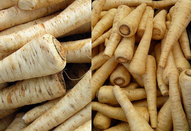 Pietruszka (po lewej) ma jaśniejszy kolor i zdecydowanie ostrzejszy zapach i smak niż pasternak (po prawej)