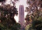 Pomarańczowe gaje i tajemnicza wieża z różowego marmuru. Witajcie w Bok Tower Gardens, ukrytym skarbie Florydy