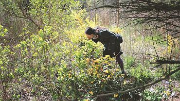 Anna podczas wiosennych zbiorów na opuszczonych działkach