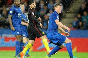 Premier League. Craig Shakespeare zwolniony z Leicester City