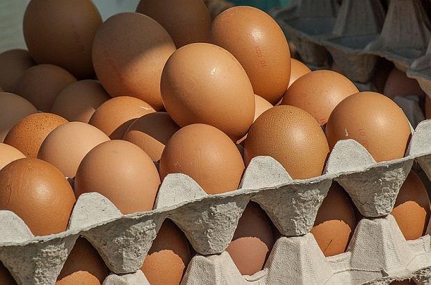 W polskich jajkach wykryto silnie toksyczny fipronil. Co to jest i dlaczego szkodzi ludziom? [WYJAŚNIAMY]
