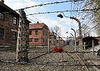 """Były więzień pozwał niemiecką telewizję o """"polskie obozy"""". Sąd oddalił sprawę"""