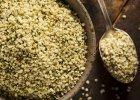 Nasiona konopi - skarbnica białka, nie tylko dla wegetarian