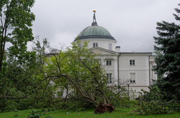 Zdjęcie numer 0 w galerii - Tak wyglądał park obok Pałacu w Lubostroniu po burzy [ZDJĘCIA]