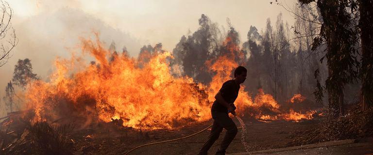 Portugalia znowu w ogniu. W gaszeniu gigantycznych pożarów pomagają mieszkańcy