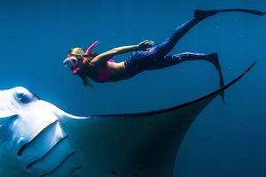30-letnia podróżniczka nurkowała wspólnie z gigantyczną mantą. Zachwycające ujęcia [WIDEO]