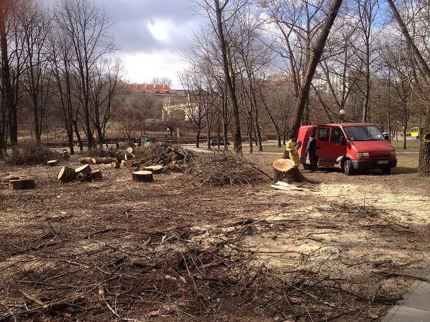 Wycinka drzew na skwerze S. Jankowskiego 'Agatona' w Warszawie.