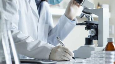 """Rozmaz krwi można wykonać na dwa sposoby, jednym z nich jest tradycyjne """"oglądanie"""" próbki pod mikroskopem"""
