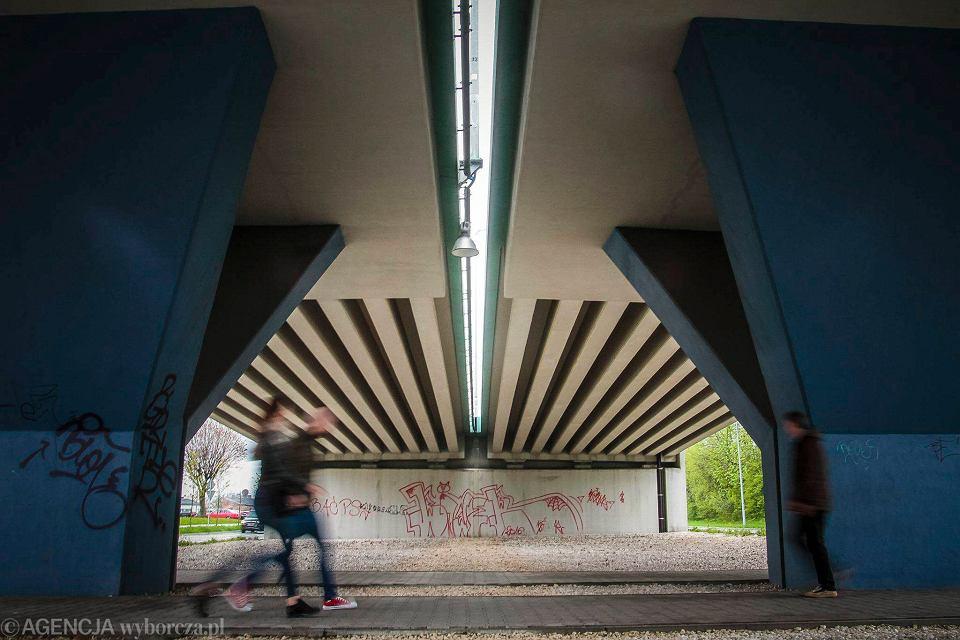 Zdjęcie numer 1 w galerii - Grafficiarze odsyłani z instytucji do instytucji. A wiadukty wciąż szpetne [ZDJĘCIA]