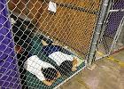 Dzieci nielegalnych imigrantów wracają do swoich rodziców. Trump ustąpił po fali krytyki