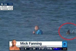 """J-Bay Open. Surfer przeżył bliskie spotkanie z rekinem. """"Widziałem tylko płetwy. Czekałem na zęby"""" [WIDEO]"""