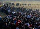 Uciekinierzy na południu Europy - gorący kartofel