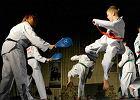 Festiwal sztuk walki w Olsztynie. Betonowe bloki p�ka�y od cios�w
