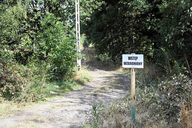 Z�oty poci�g. Cztery znaleziska i dwie lokalizacje w Wa�brzychu. Jest nowe zg�oszenie z Niemiec