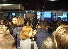 Pierce Brosnan we Wrocławiu. Aktor spotkał się z fanami w kinie