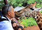 Pocałunek z Daisy Rothschild