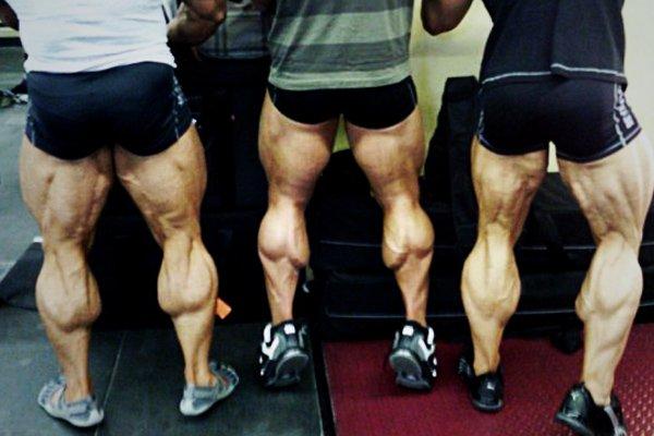 Mocne nogi przydadzą się na zimę