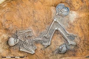 """Naukowcy z Wrocławia w """"Nature"""". Badania szkieletów z całej Europy pomogły rozwiązać zagadkę"""