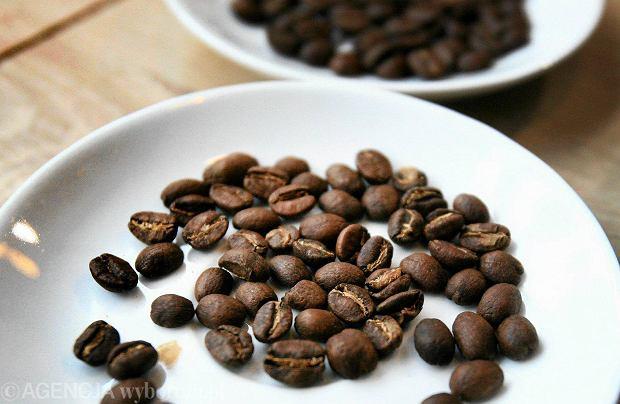 Kawa. Zielona, ziarnista, rozpuszczalna- 21 faktów, których o niej nie wiesz