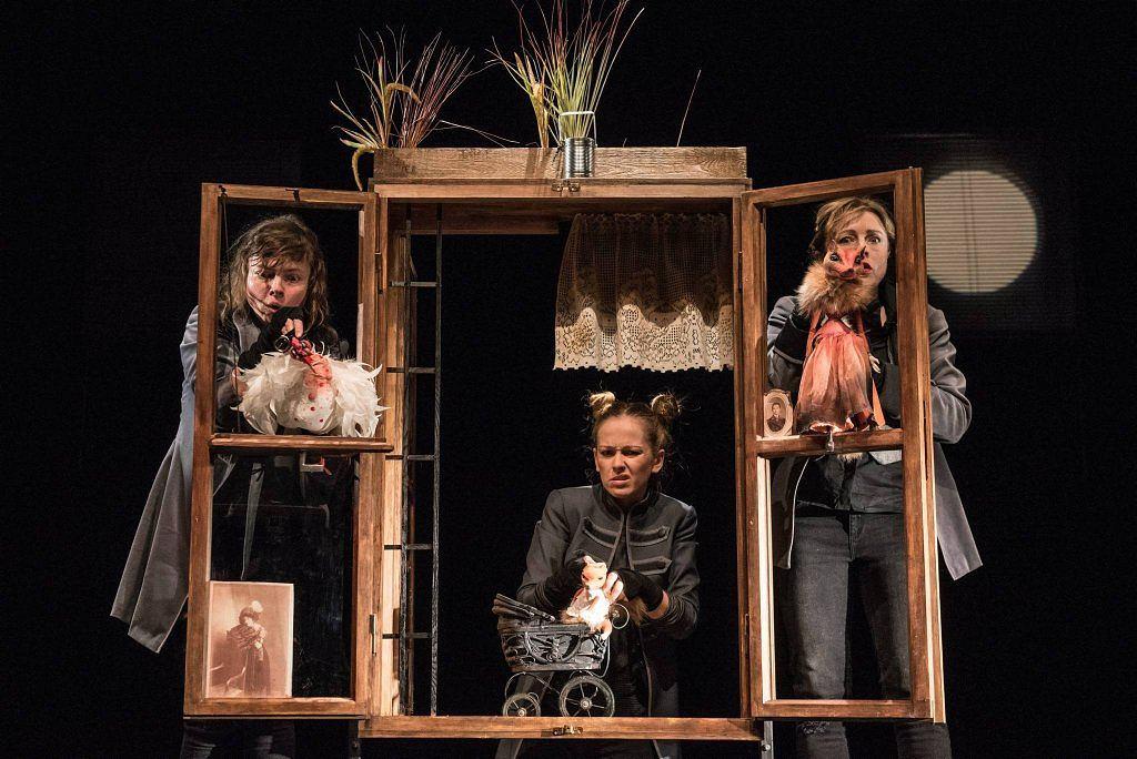 Podróż na czternaście łap, Teatr Guliwer / Marta Ankiersztein