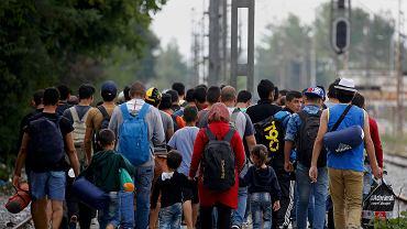 Syryjscy uchodźcy na granicy grecko-macedońskiej
