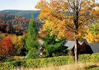 Ogród jesienią - jak o niego dbać?