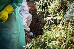 Udusił żonę, a ciało zakopał w ogrodzie? Oskarżony po ośmiu latach dzięki Archiwum X