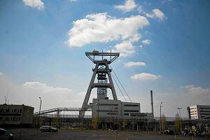 Australijska firma bije rekordy na polskiej giełdzie. Pomaga jej państwowy koncern