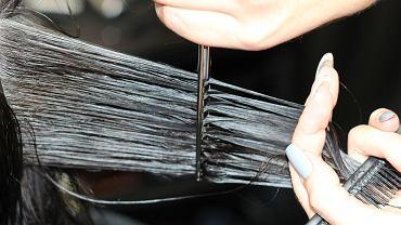 Włosy krótkie czy długie? To odwieczny dylemat wielu kobiet