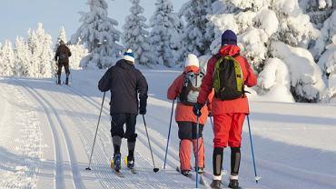 Bieganie na nartach