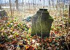 Domy na cmentarnych kamieniach. O czym milczy Bukowiec?