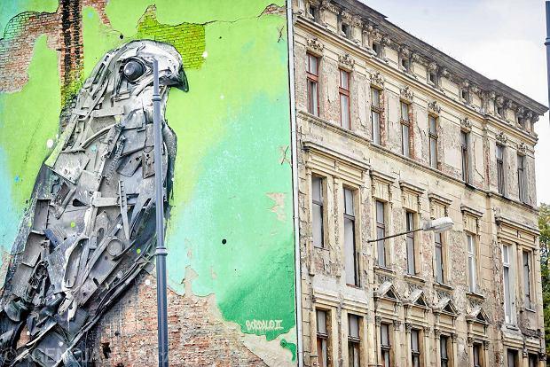 Nowy mural ptak z odpad w z wysypiska zdj cia wideo for Mural na tamie w solinie