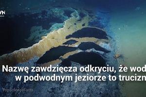 """""""Miejsce nie z tego świata"""". Odkryto podwodne jezioro, wypełnione niebezpieczną substancją"""