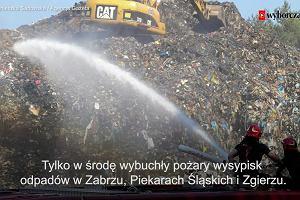 W wielu miastach Polski płoną śmieci. Co wiemy o pożarach wysypisk odpadów?