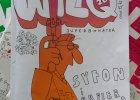 20 składników niezbędnych do uzyskania idealnego WILQa