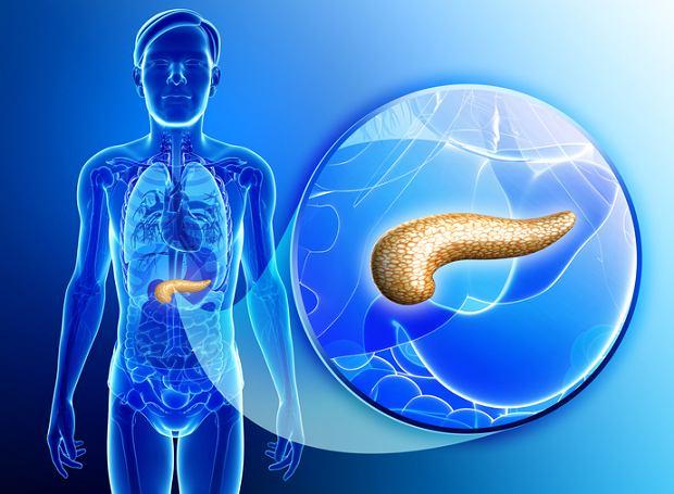 Trypsyna - enzym trawienny trzustki. Po co wykonuje się badanie trypsyny i chymotrypsyny?