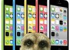 iPhone 5C - jest kolorowo, ale wcale nie r�owo