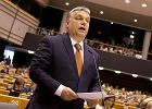 Bunt studentów, czyli Orbán tańczy kazaczoka