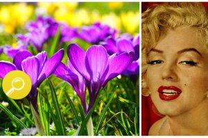 Typ kolorystyczny Pani Wiosna: jaka jest? Jakie kolory jej pasuj�, a jakich powinna unika�?