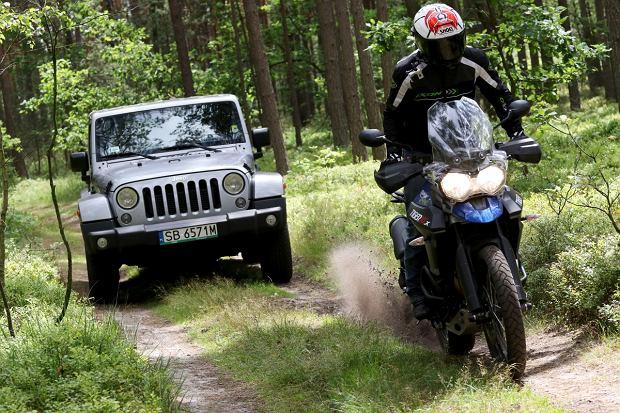 Jeep Wrangler vs. Triumph Tiger | Konfrontacja | Leśne szaleństwo