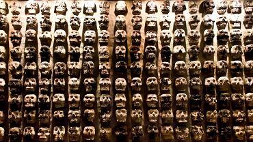 Ściana czaszek wyrzeźbiona przez Azteków