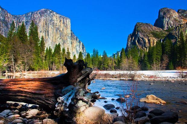 Park Narodowy Yosemite / shutterstock
