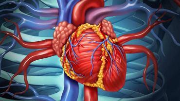 Zmiany w tętnicach obwodowych najczęściej pojawiają się u osób z miażdżycą