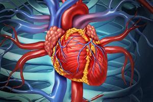 Choroby tętnic obwodowych