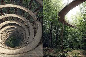 Nowy pomysł na obcowanie z naturą: gigantyczny deptak w koronach drzew [ZDJĘCIA]