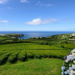 Lot na Azory od 700 z� w dwie strony? Od kwietnia to b�dzie mo�liwe